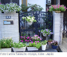 Um jardim delicado!
