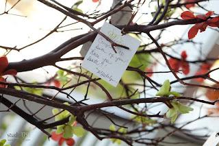 Signing tree