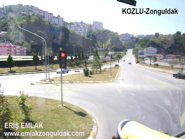 KOZLU