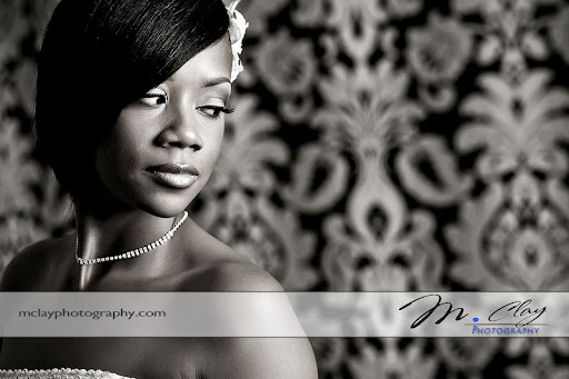 Bridal portrait against a beautiful background for her Charlotte Wedding. Photographer - M. Clay Photography