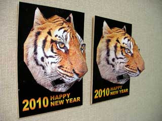 2010 Year of the Tiger Papercraft 3