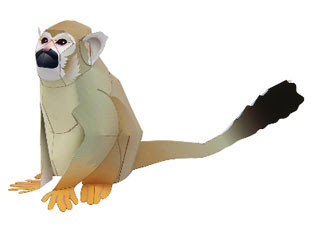 Squirrel Monkey Papercraft