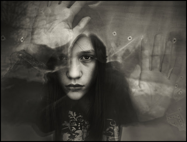 design cove photography by raphael guarino