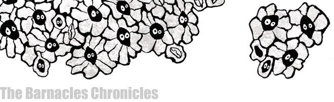 thebarnacleschronicles