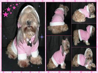 sueter capucha perro
