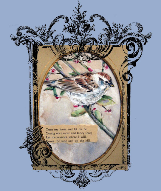[Sparrow+Frame.jpg]
