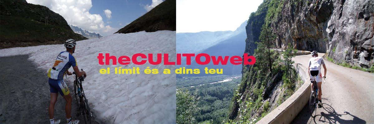 The culitoweb