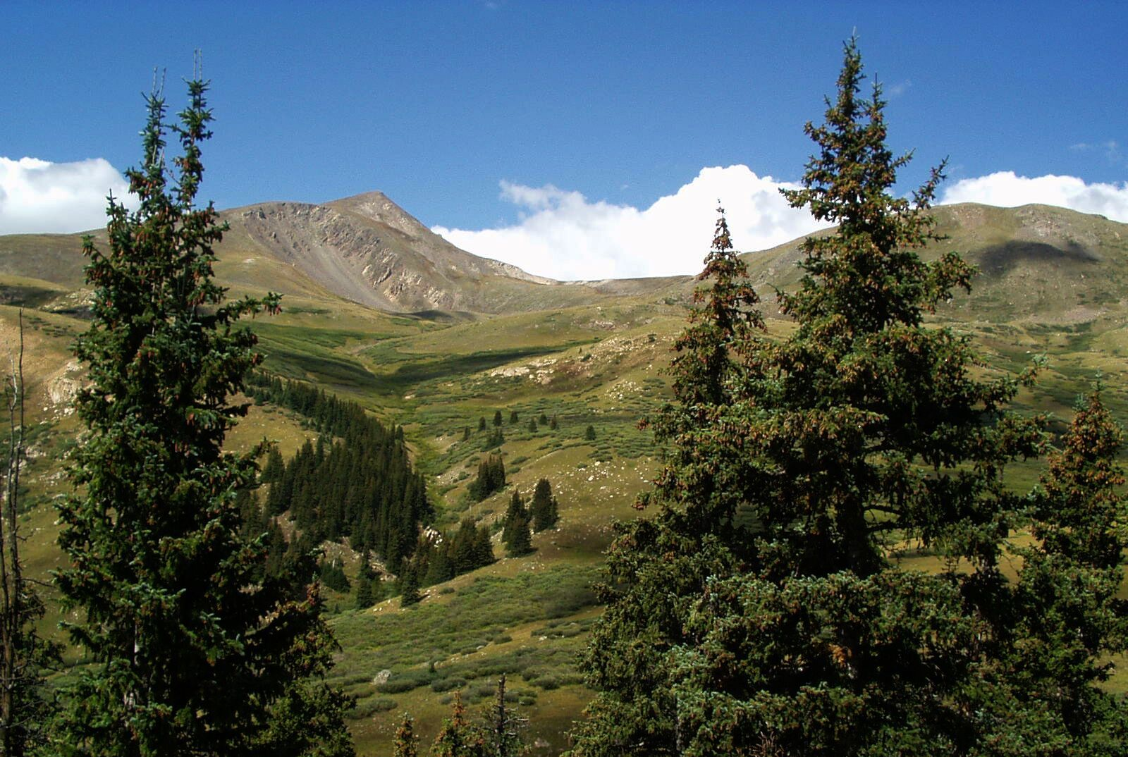scenic view, guanella pass scenic byway