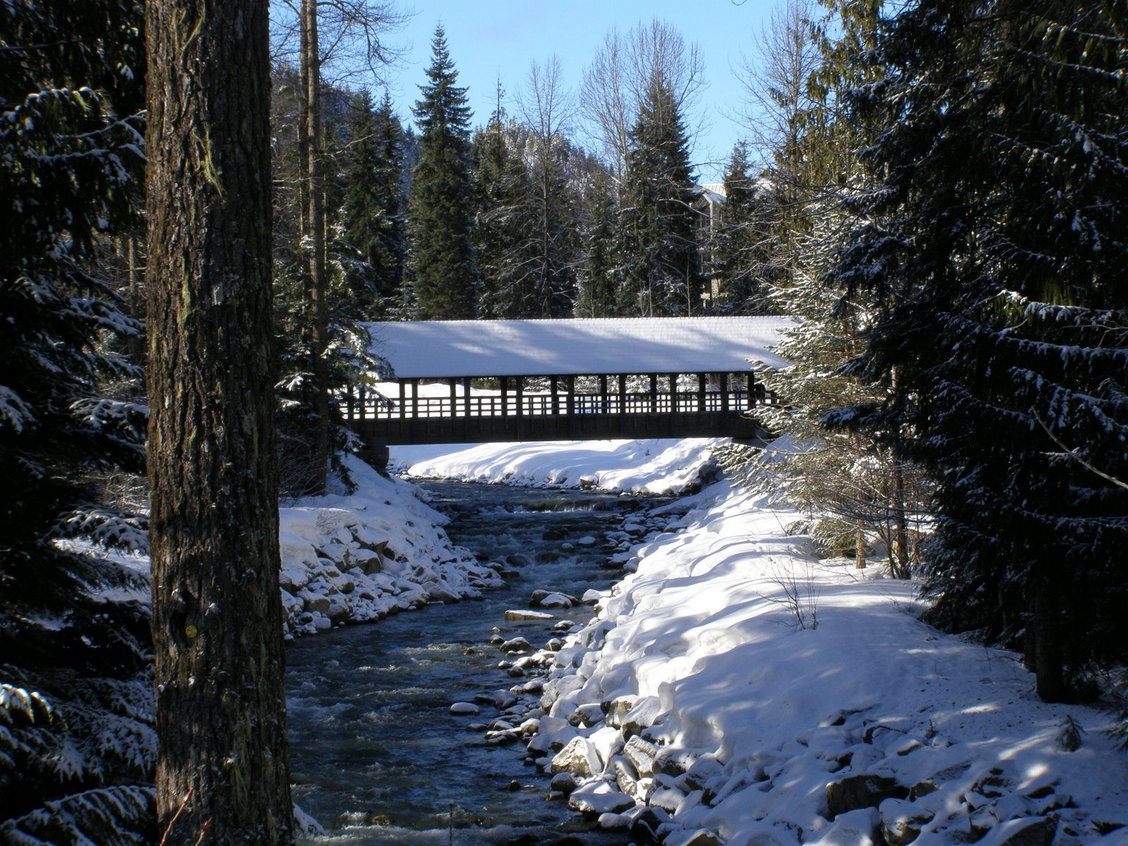 Fitzsimmons Covered Bridge, Whistler