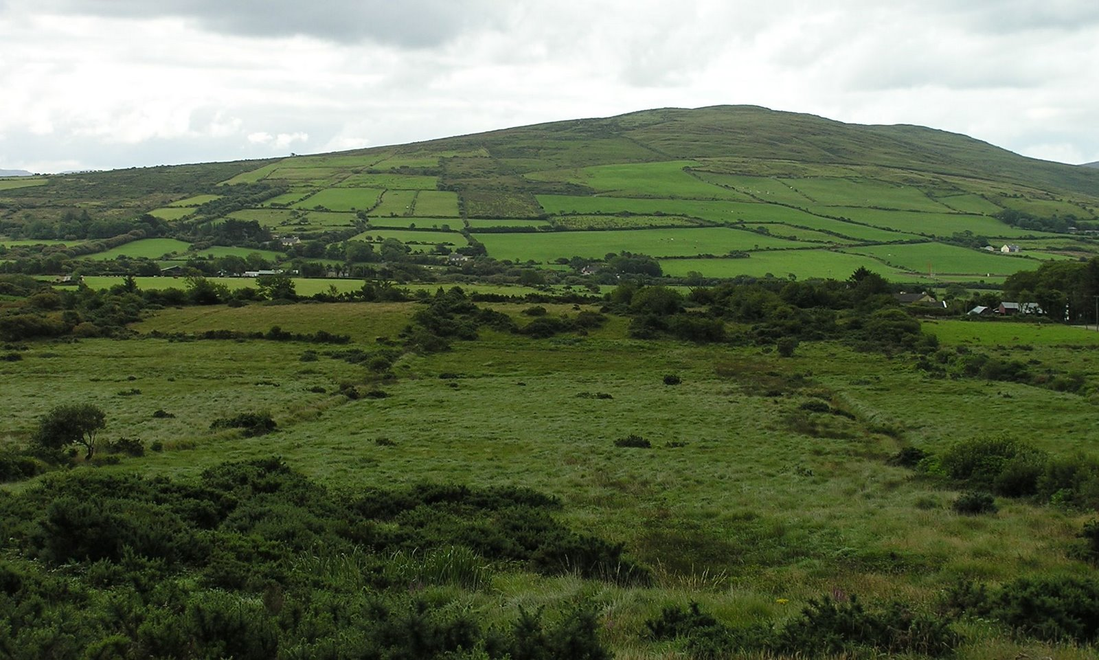 ring of kerry fields