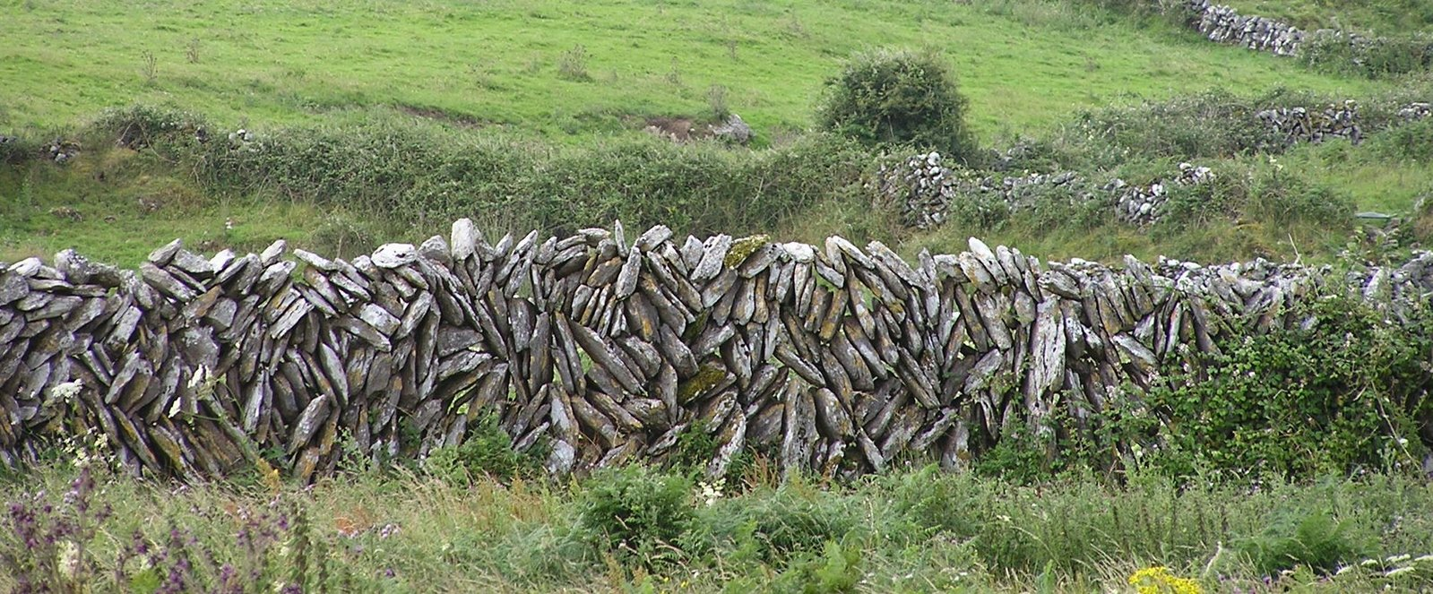 stone wall, county clare, ireland