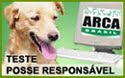 Teste Posse Responsável - para fazer quando pensar em ter um cão!