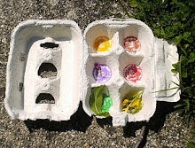 Procurar as cores no jardim
