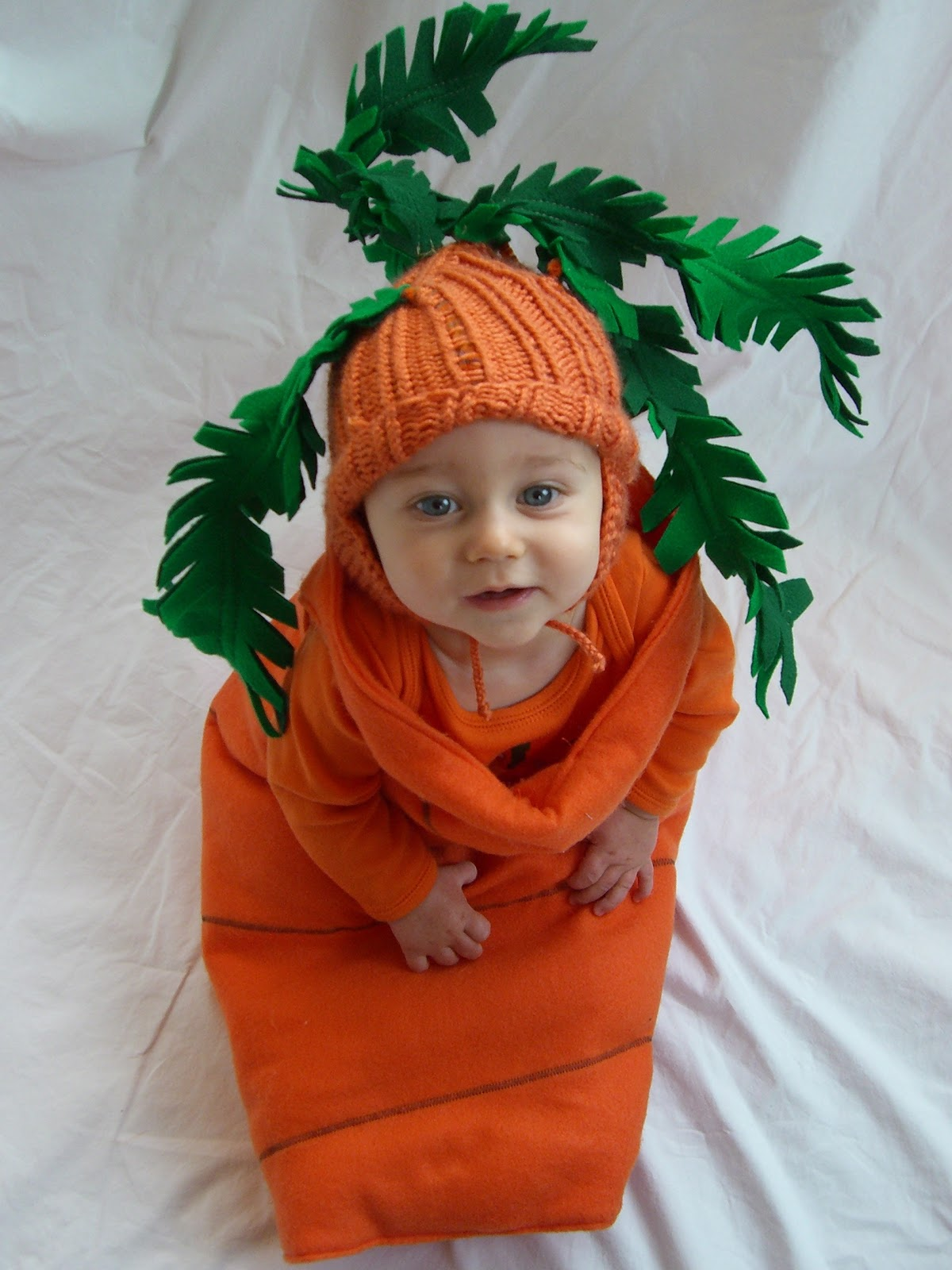 Thursday October 28 2010  sc 1 st  everywhere orange & everywhere orange: Carrot Costume