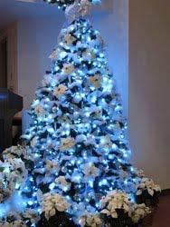 LED Christmas Lights on Tree