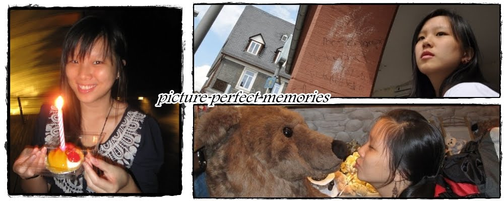 picture perfect memories
