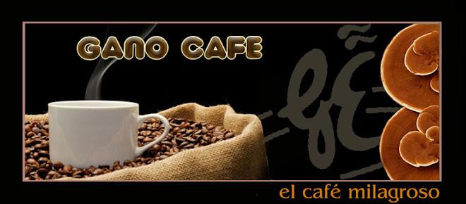 Gano Café - Ganoderma Lucidum