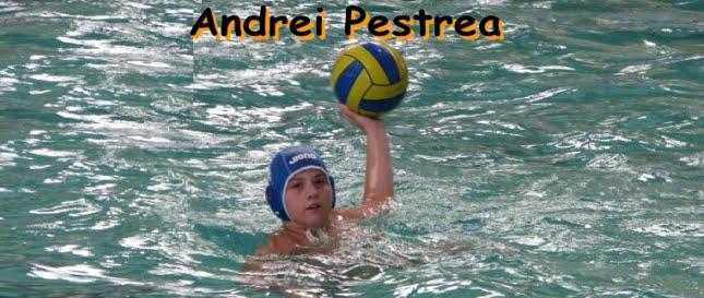 Andrei Pestrea