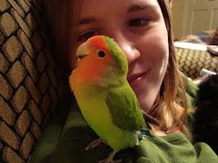 Mango and Me