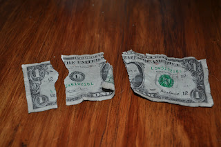 A dollar bill ripped into three pieces on the kitchen table
