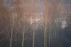 la photo du 28 décembre 2008 (228)