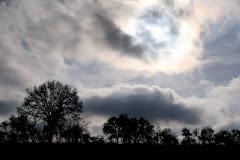 la photo du 17 février 2009 (280)