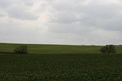 la photo du 13 mars 2009 (302)