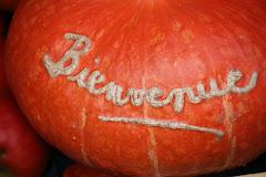 la photo du 19 octobre 2009 (519)