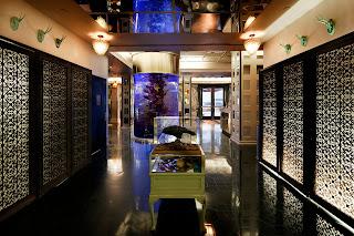 dream hotel NYC