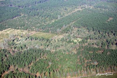 Couloir d'arbres déracinés sur Cabanac