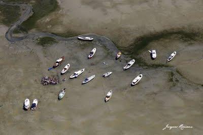 Photo aérienne d'un rassemblement de Pinasses sur le Bassin d'Arcachon à proximité de l'île aux oiseaux.