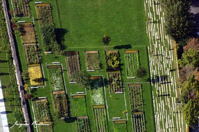 Vue aérienne du Jardin Botinique de Bordeaux