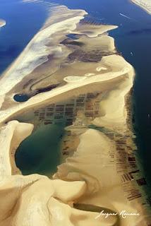 Photo aérienne du Banc d'Arguin sur le Bassin d'Arcachon