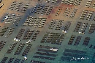 Photo aériennes des Pars à Huitres du Banc d'Arguin