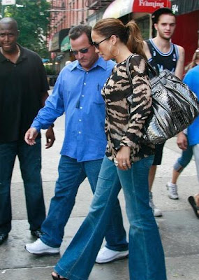 Jennifer Lopez Puffy Python Metallic Bag by Zagliani