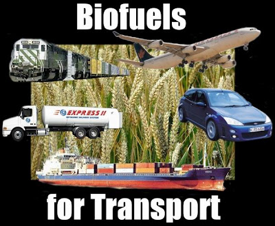 Biofuel conversion