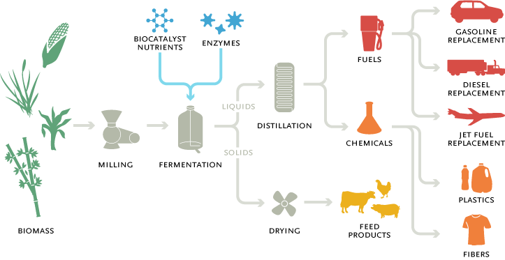 Biomass Bioconversion To Mixed Alcohol Fuels ~ Al fin energy gevo turning cellulose into fuels plastics