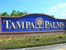 New tampa and wesley chapel fl december 2007 for Epperson ranch homes