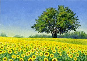 Field of Sunflowers by Shari Erickson