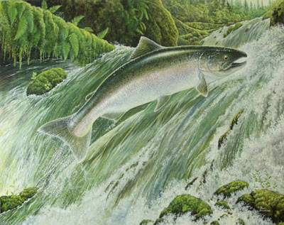 spring chinook salmon painting by wildlife artist Shari Erickson