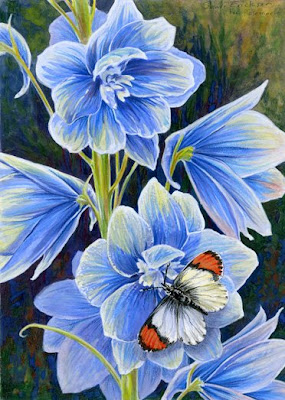 delphinium and butterfly painting by Shari Erickson