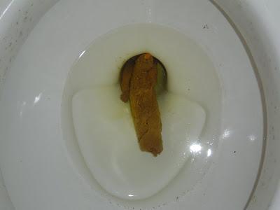 The poop log poop 2