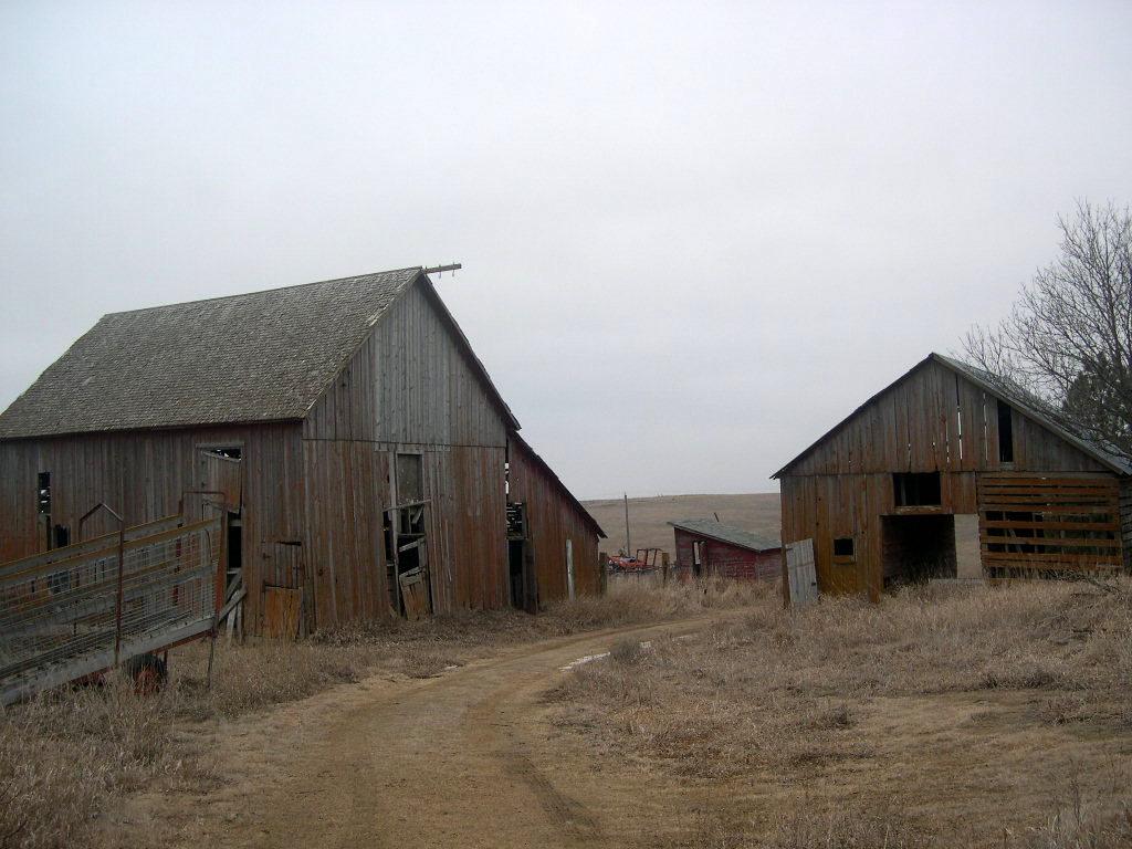 Horsetrailriders.com: June 2010