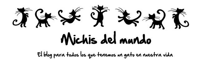 MICHIS DEL MUNDO