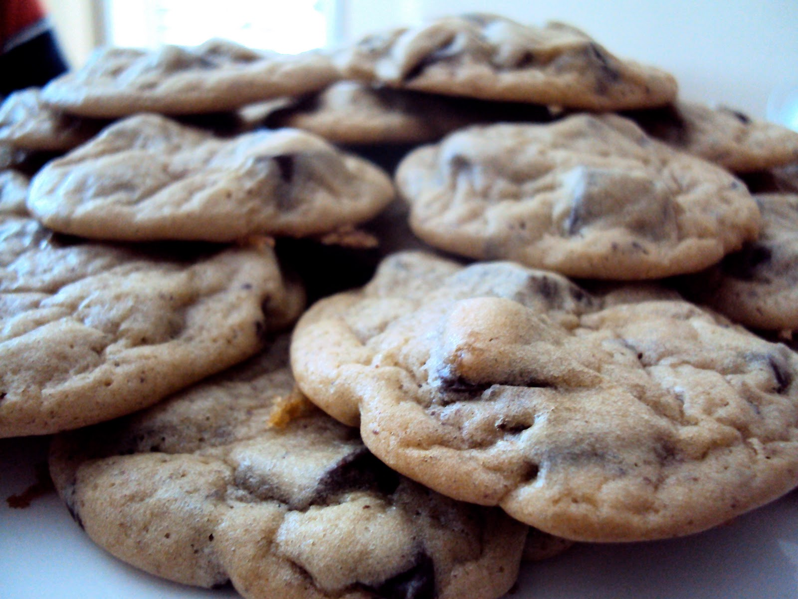 Squirrel bakes cholesterol free chocolate chip cookies cholesterol free chocolate chip cookies forumfinder Choice Image