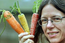 Carrot extract blocks carcinogenesis