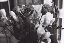 un jour, je reçus de très belles fleurs (si on clique dessus, elles chantent!)