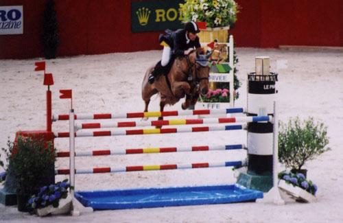 Concours De Saut D Obstacle Types D Obstacles Les Bidets