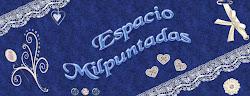 FORO ESPACIO MILPUNTADAS