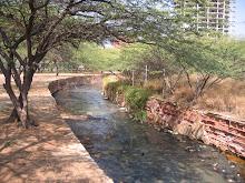A stream running into Lake Maracaibo
